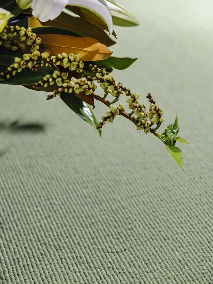 Garden artichoke on carpet